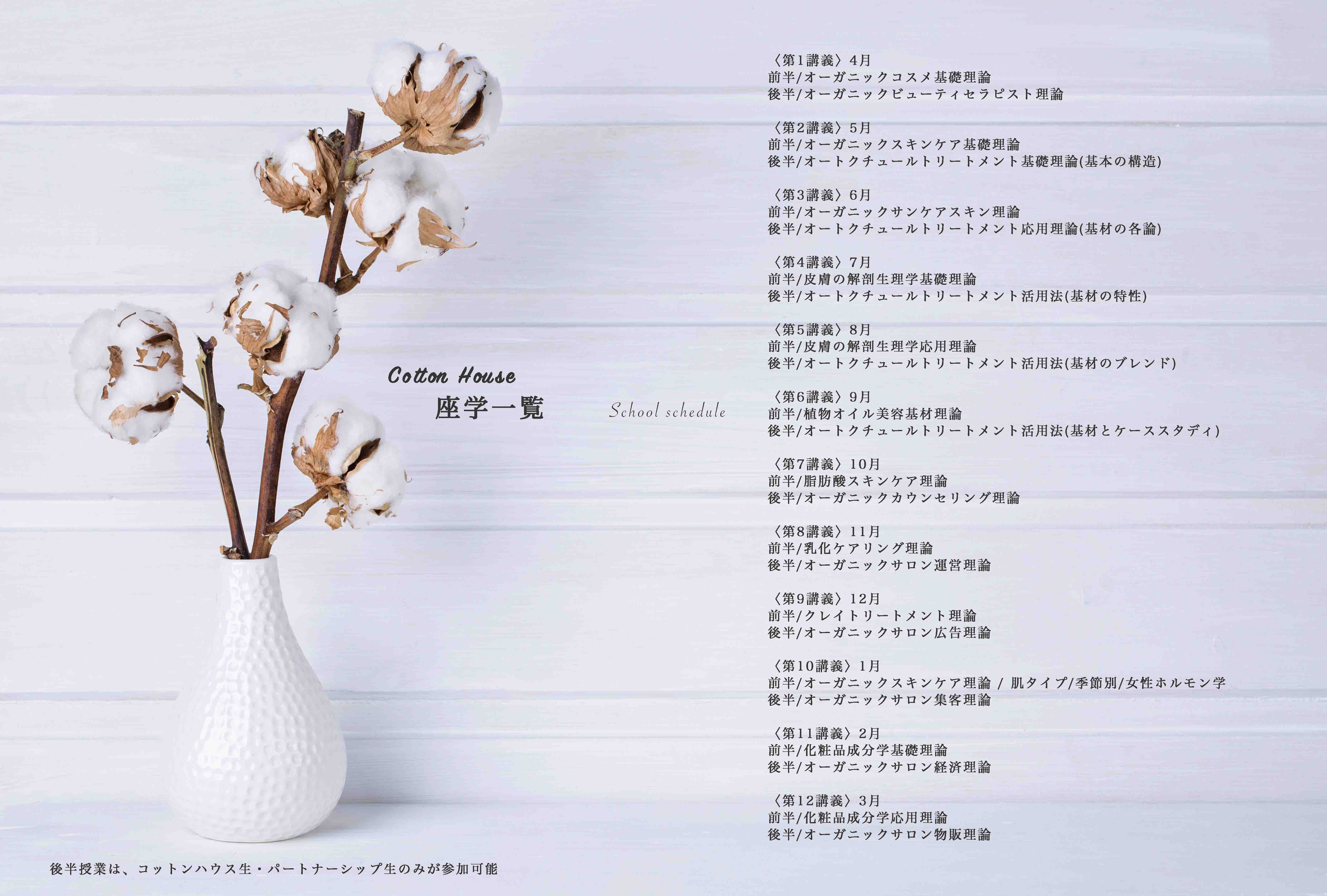 Vase mit cotton flowers on a white wooden background. Copy space for your text.