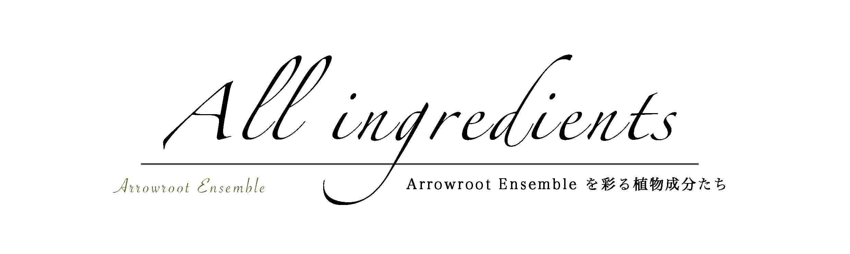 Arrowroot Ensemble 18
